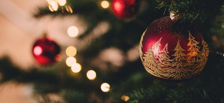 Dansk jul og indfødsretsprøven